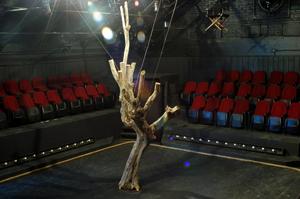 Teatro El granero, Xavier Rojas